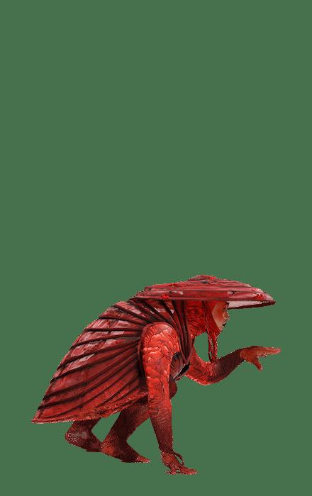 spectacle emblématique en direct et divertissement dragone